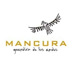 Picture for manufacturer Mancura