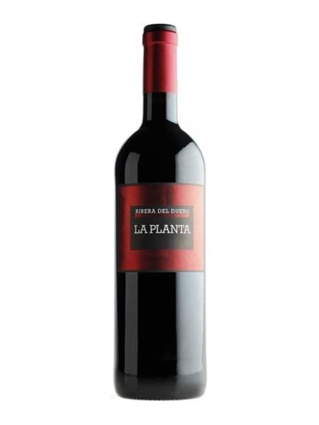 Hình của Rượu vang Azuaga La Planta